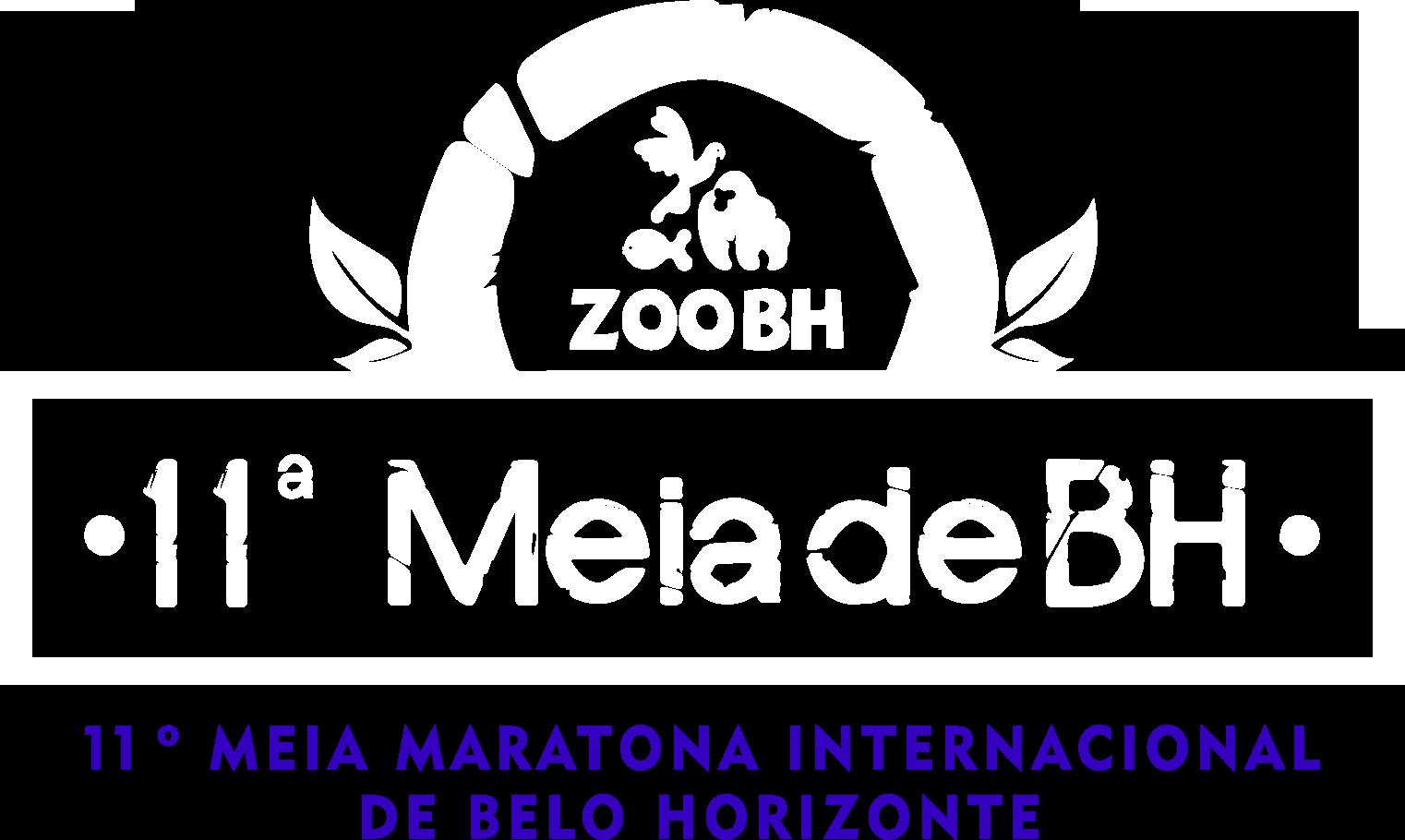 MMIBH